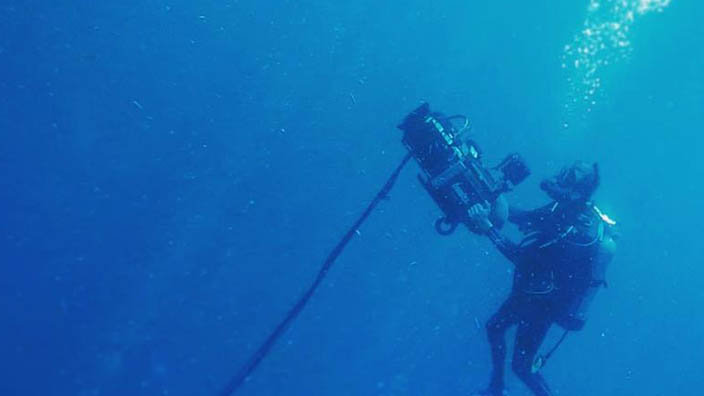 Ocean Sentinel Productions provides full underwater film production for any size project.