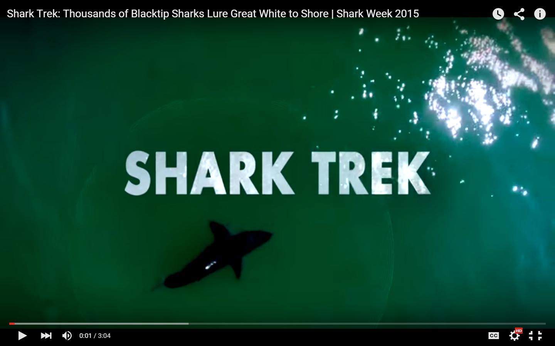 sharktrek